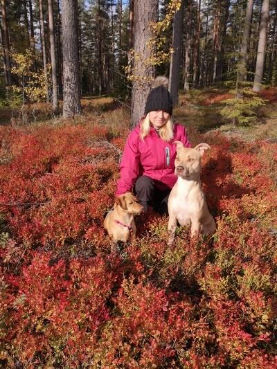 Elina praktik digitalpartner skog vår leden hundar